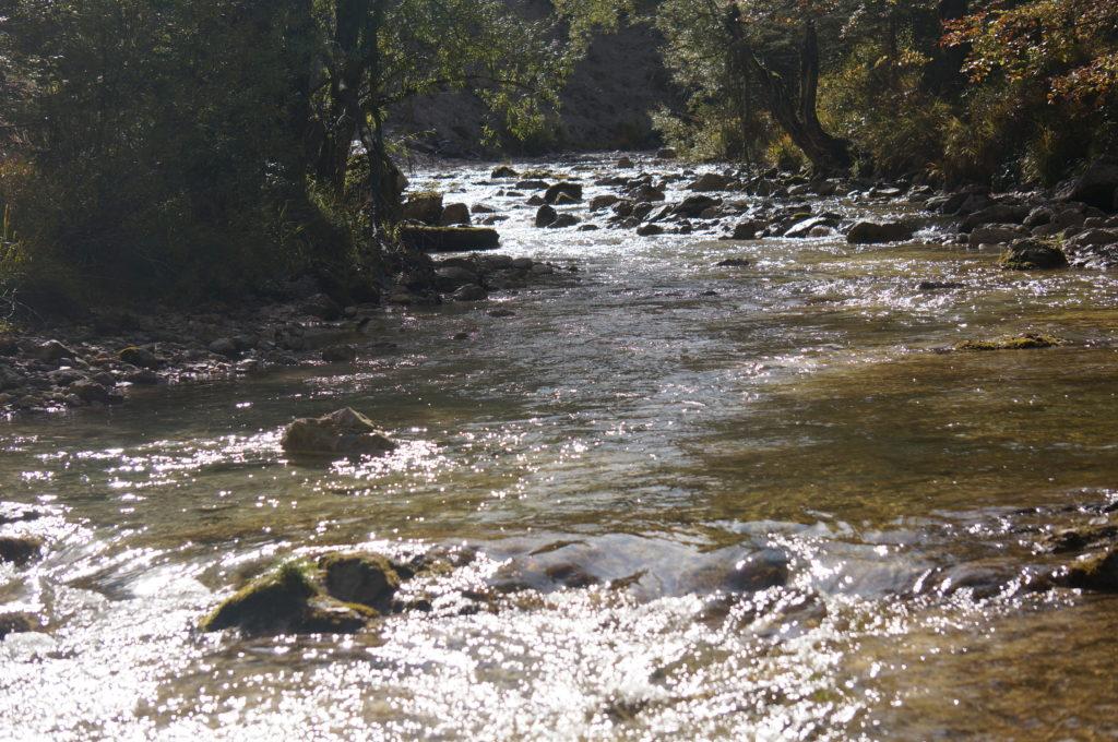 Fluss in den Ötschergräben